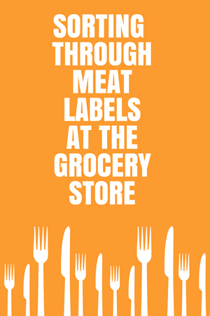 Food Labels: How To Decode Dinner